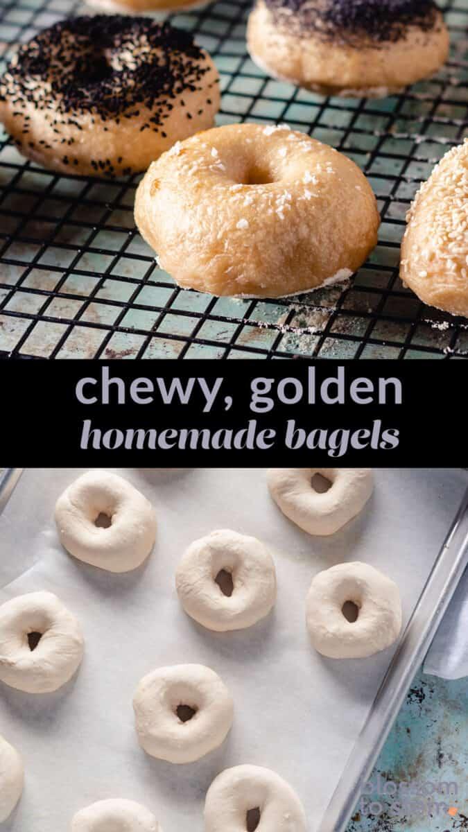 Chewy, golden homemade bagels