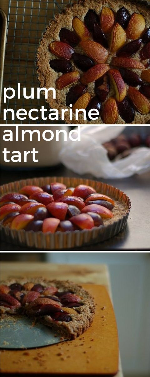 Plum Nectarine Almond Tart. From Blossom to Stem | www.blossomtostem.net