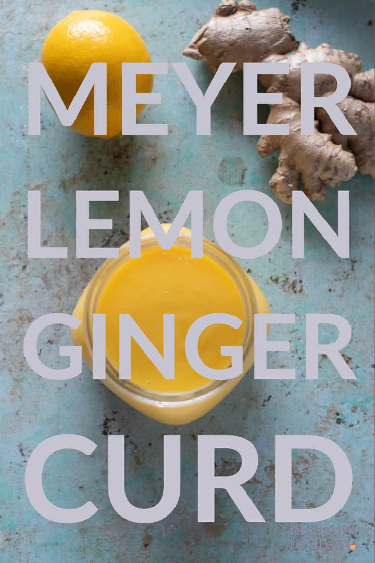 Meyer Lemon Ginger Curd