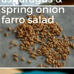 Asparagus and Spring Onion Farro Salad. From Blossom to Stem   www.blossomtostem.net