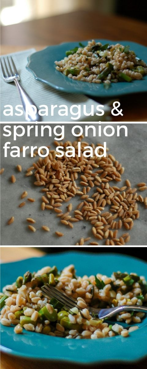 Asparagus and Spring Onion Farro Salad. From Blossom to Stem | www.blossomtostem.net