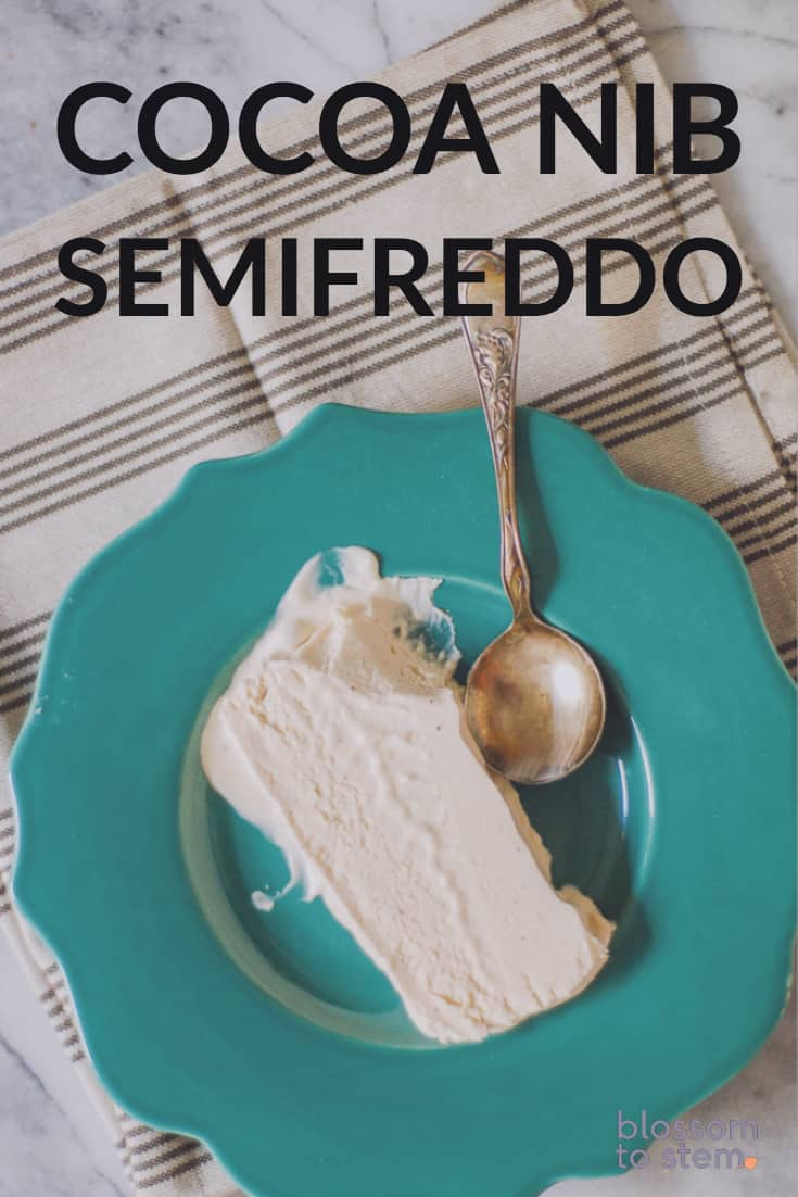 Cocoa Nib Semifreddo