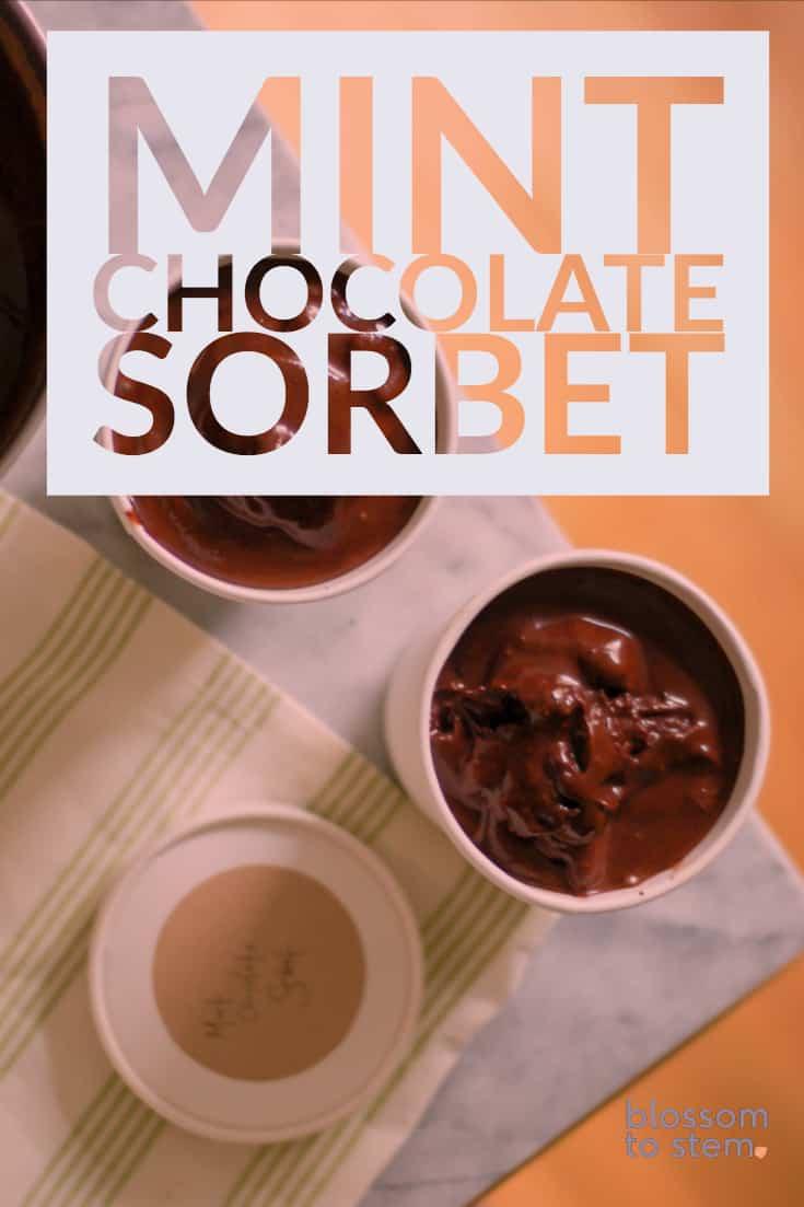 Mint Chocolate Sorbet