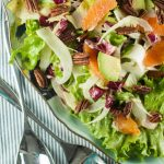 Citrus Avocado Salad with Cara Cara Oranges, Shaved Fennel, Avocado, Escarole, Endive and Radicchio. A refreshing, colorful, and delicious salad. From Blossom to Stem | Because Delicious www.blossomtostem.net #glutenfree #vegan #vegetarian