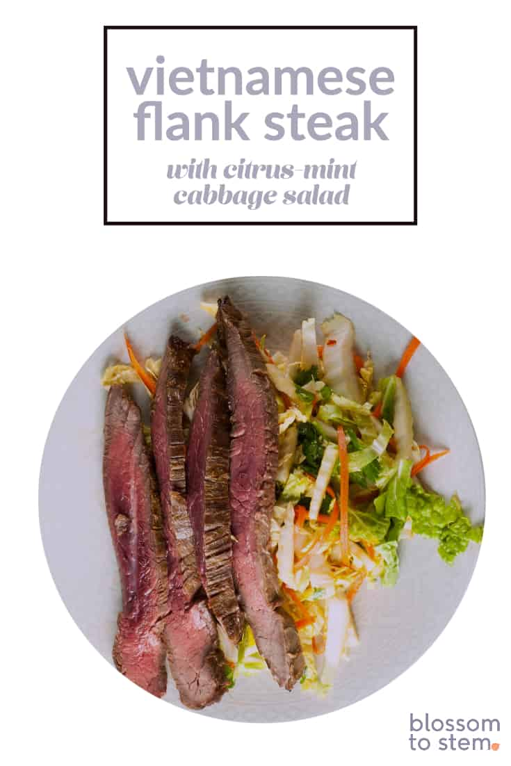 Vietnamese Flank Steak with Citrus-Mint Cabbage Salad