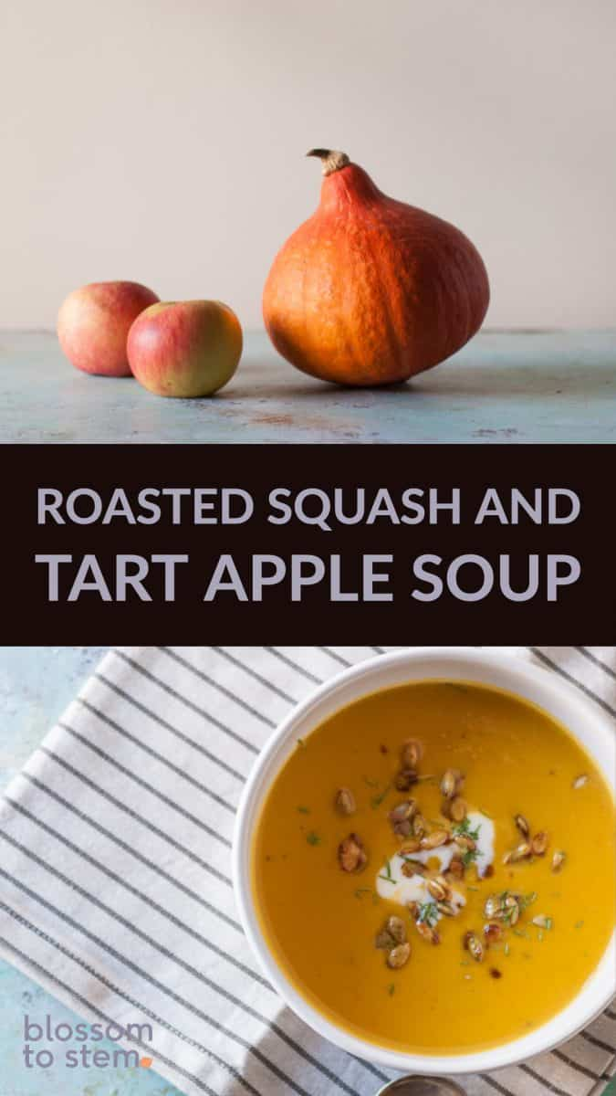 Roasted Squash and Tart Apple Soup