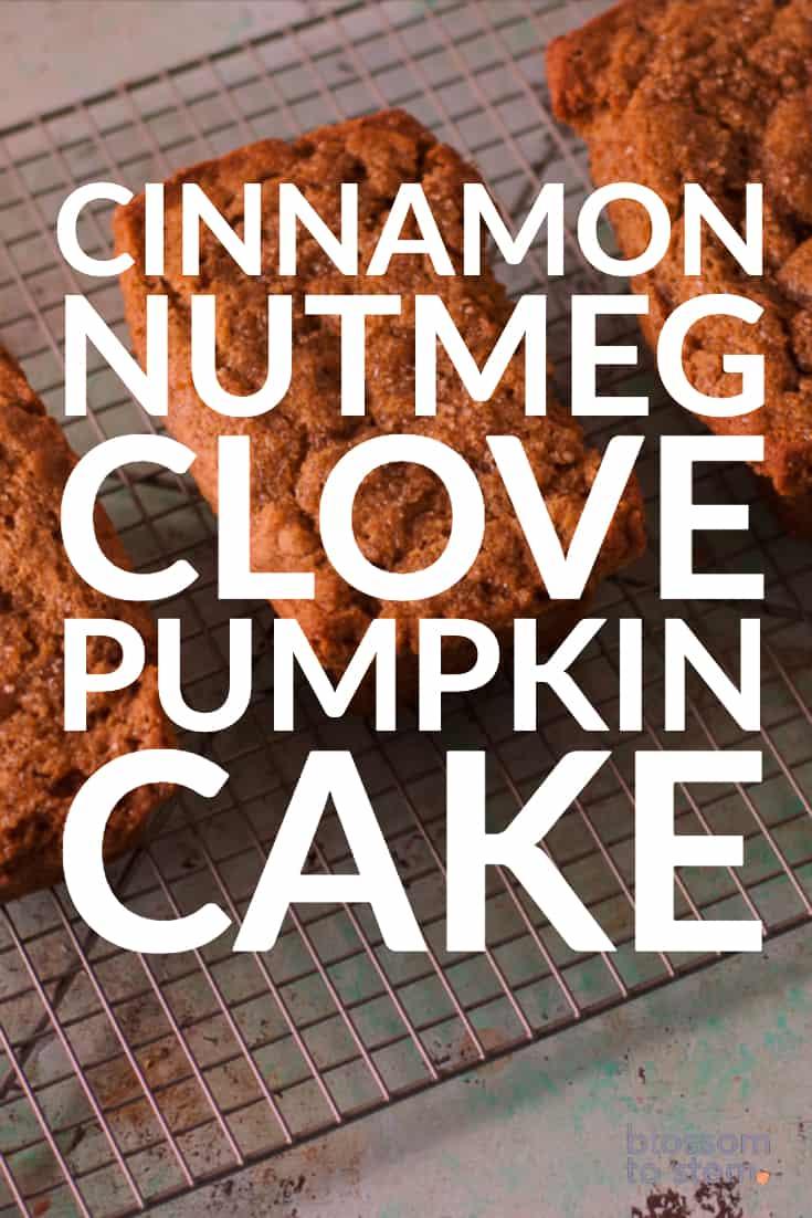 Cinnamon Nutmeg Clove Pumpkin Cake