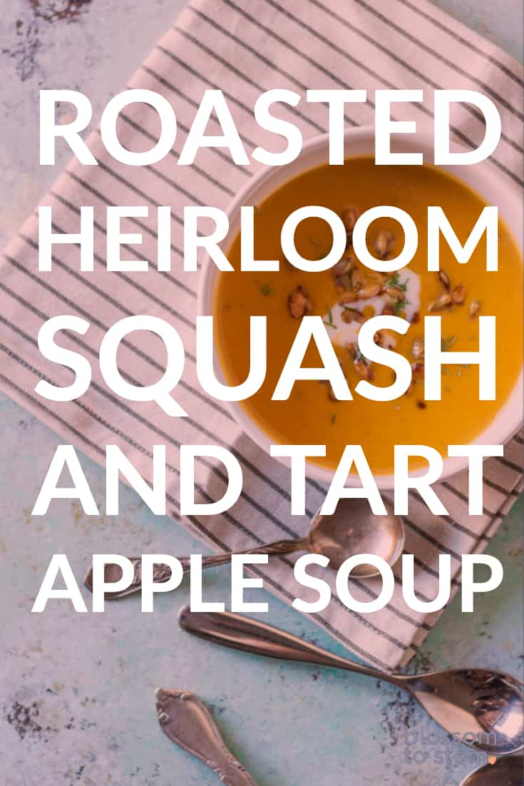 Roasted Heirloom Squash and Tart Apple Soup