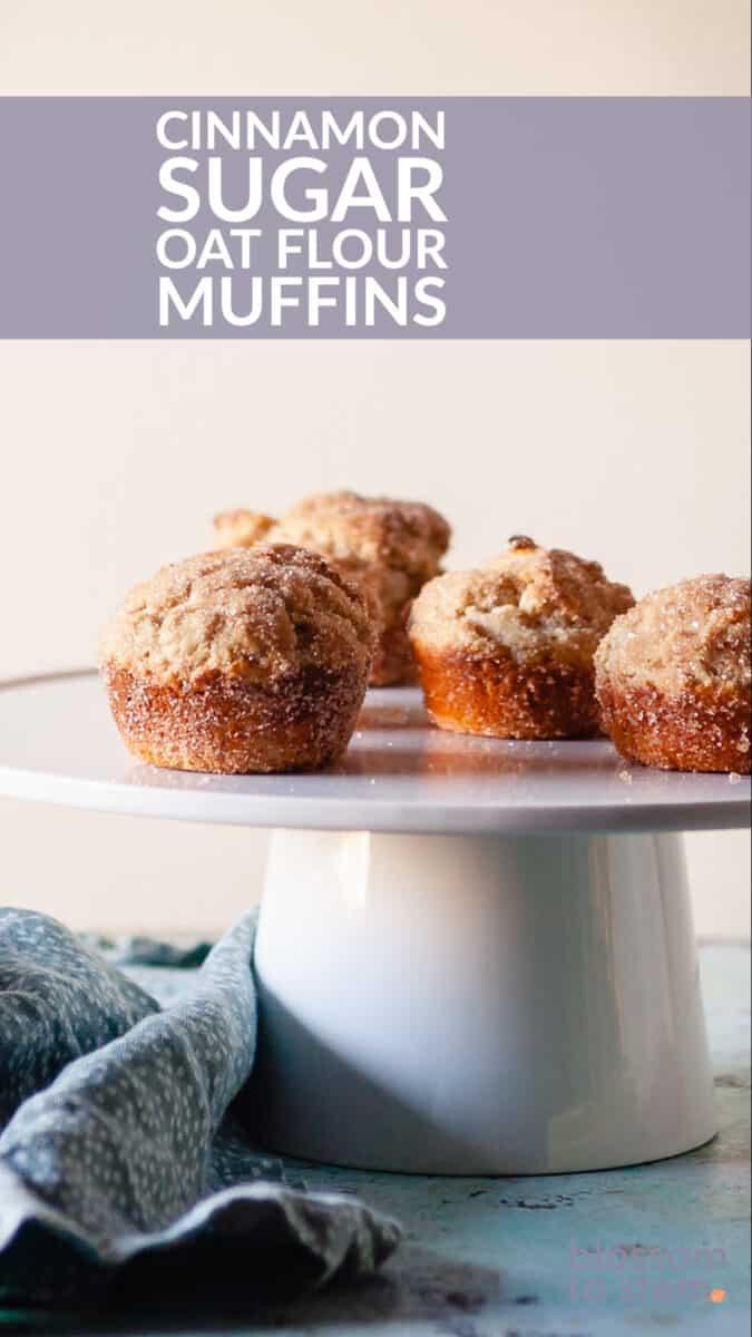 Cinnamon Sugar Oat Flour Muffins