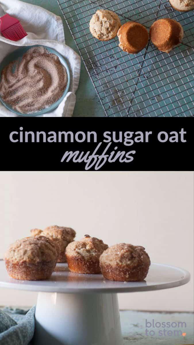 Cinnamon Sugar Oat Muffins