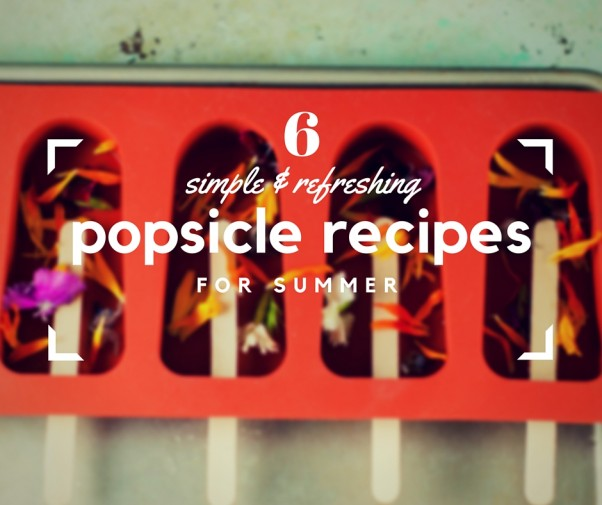 6 Simple, Refreshing Popsicle Recipes for Summer. From Blossom to Stem | Because Delicious | www.blossomtostem.net