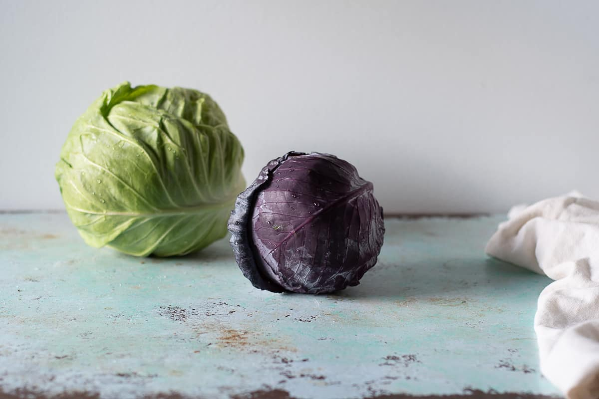 Heads of red and green cabbage