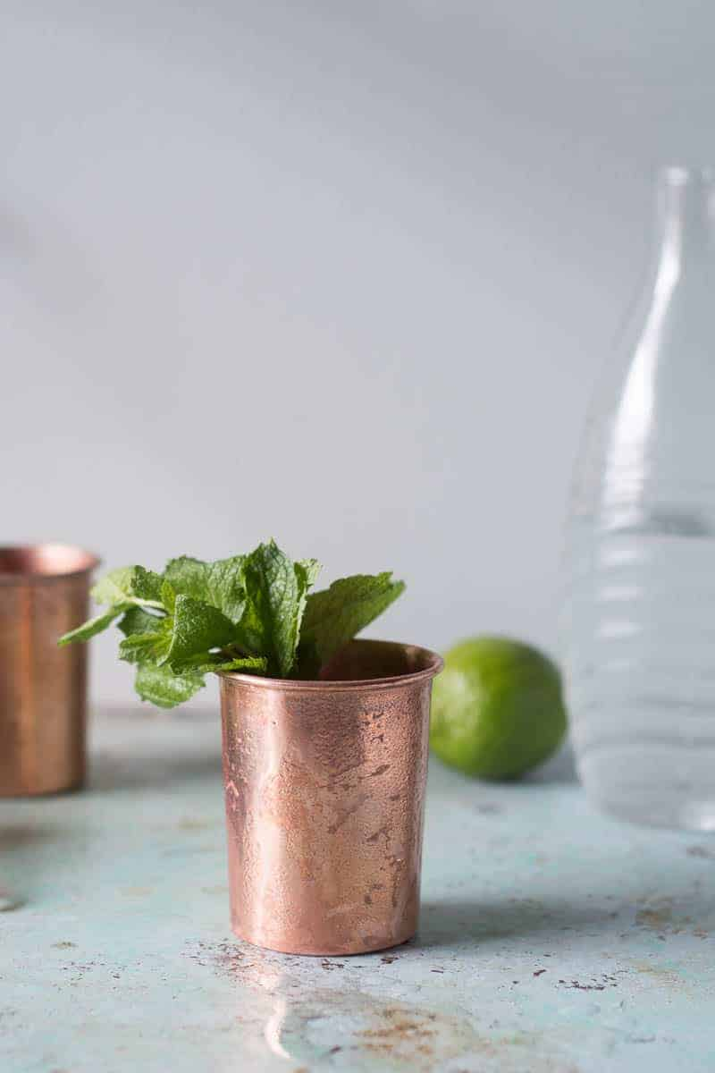 Mezcal Mule. A variation on the Moscow Mule with smoky mezcal, ginger ale, and lime. A simple, refreshing cocktail for fans of mezcal. From Blossom to Stem | Because Delicious | www.blossomtostem.net
