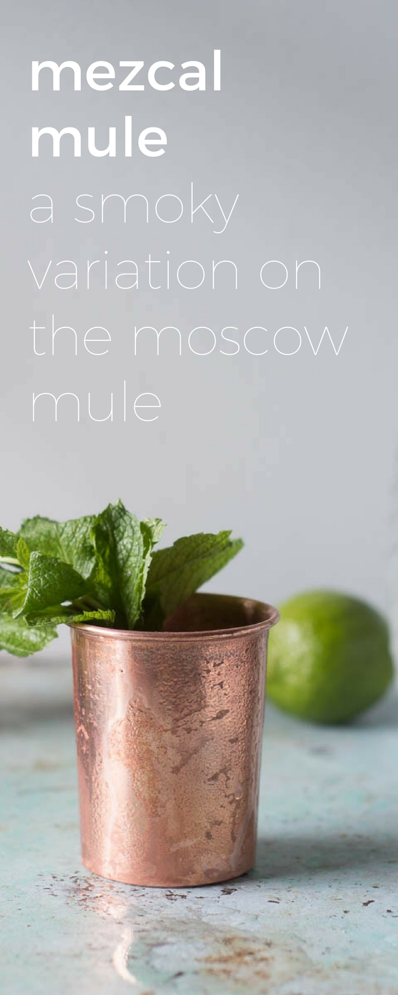 Mezcal Mule. A smoky variation on the Moscow Mule cocktail. From Blossom to Stem | www.blossomtostem.net