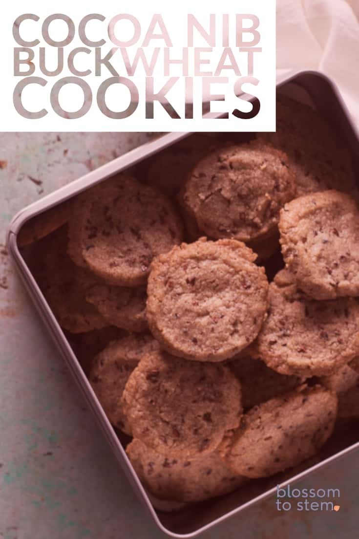 Cocoa Nib Buckwheat Cookies