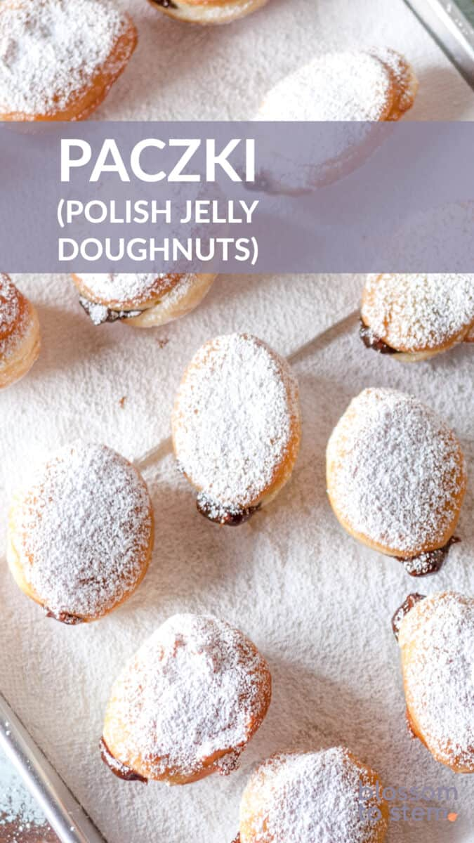 Paczki (Polish jelly doughnuts) on paper towels