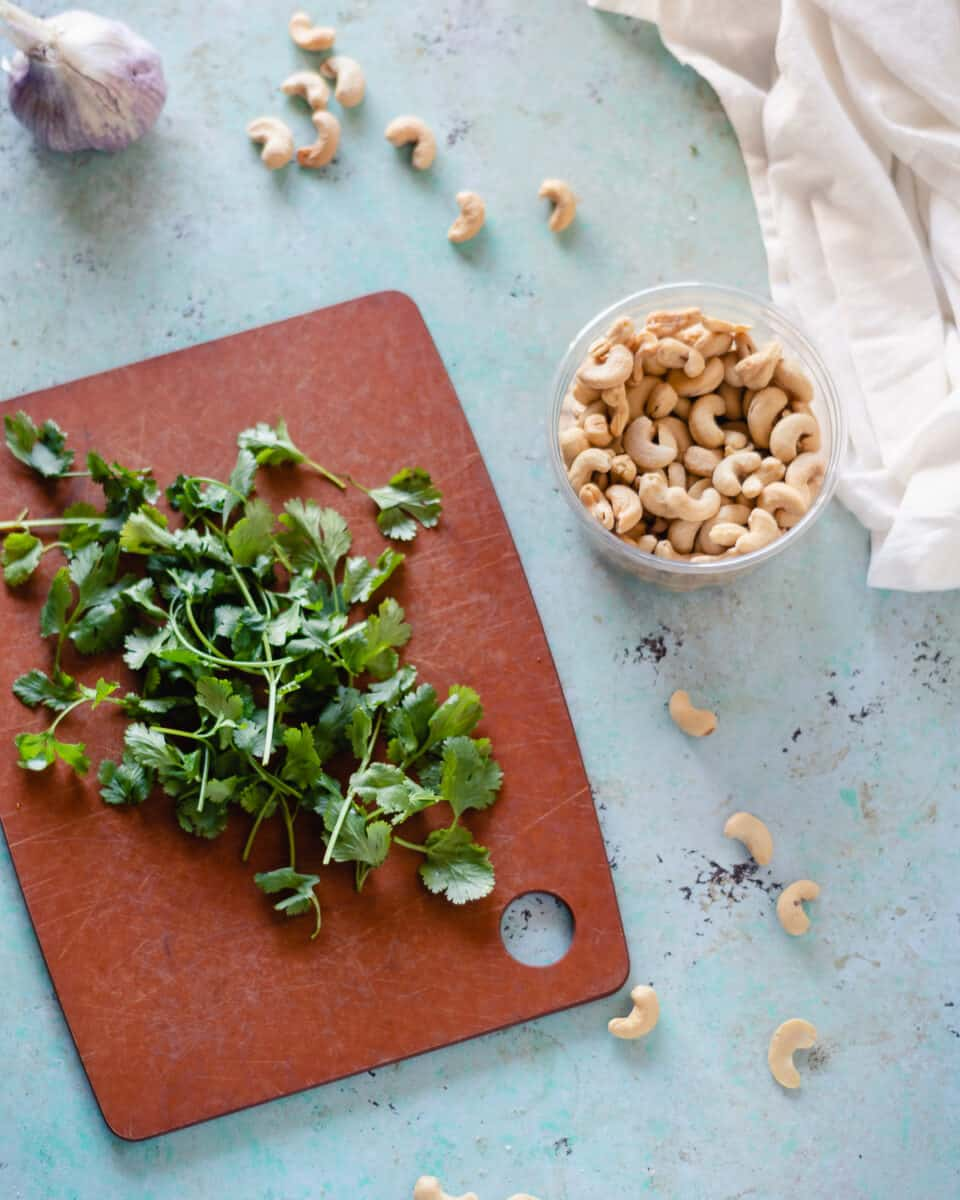 Cilantro on a cutting board next to a container of cashews and a bulb of garlic