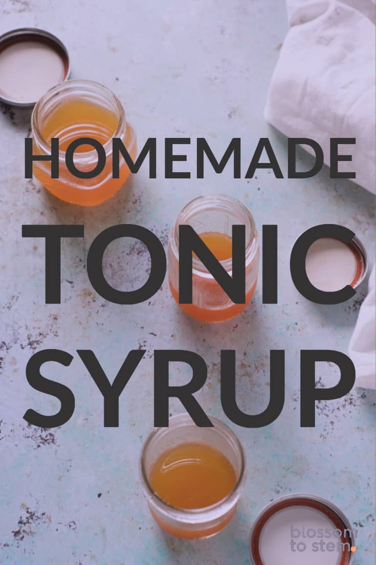 Homemade Tonic Syrup