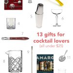 13 Gifts for Cocktail Lovers (all under $25)   Blossom to Stem   www.blossomtostem.net