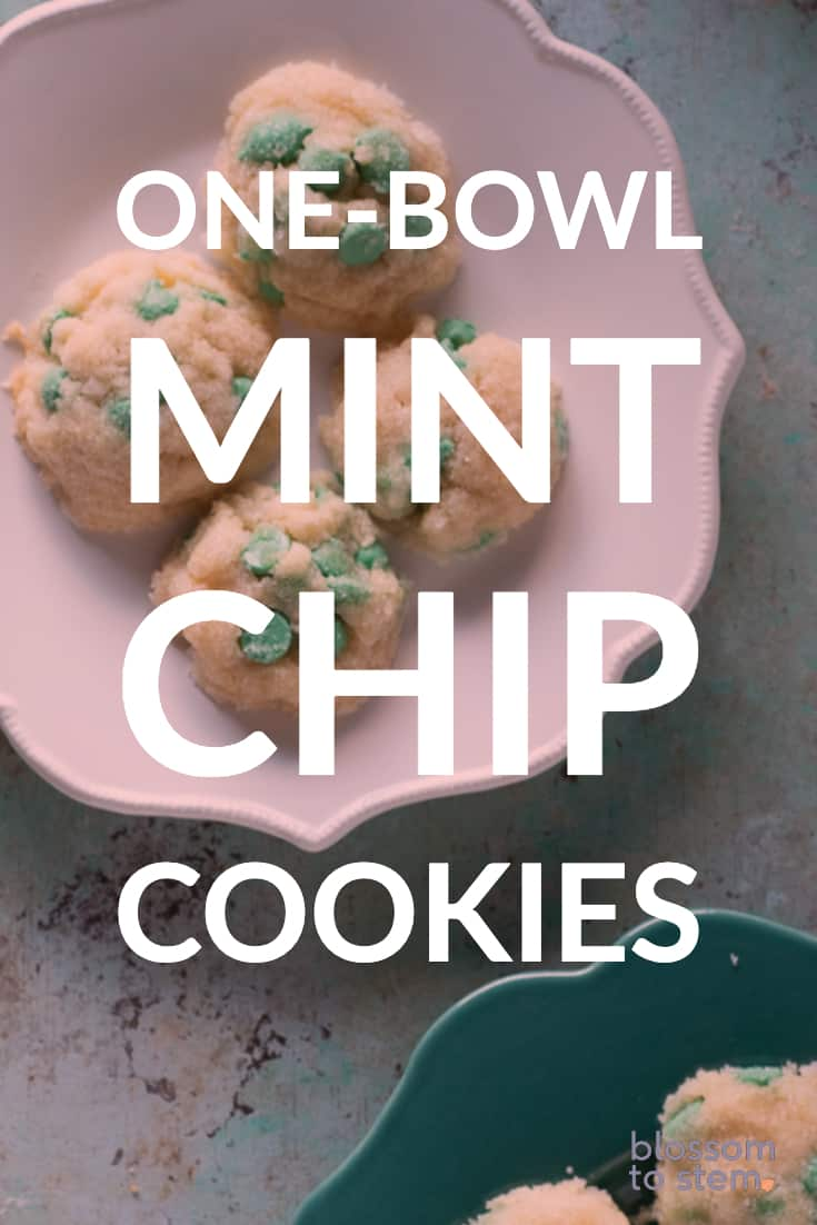 One-Bowl Mint Chip Cookies