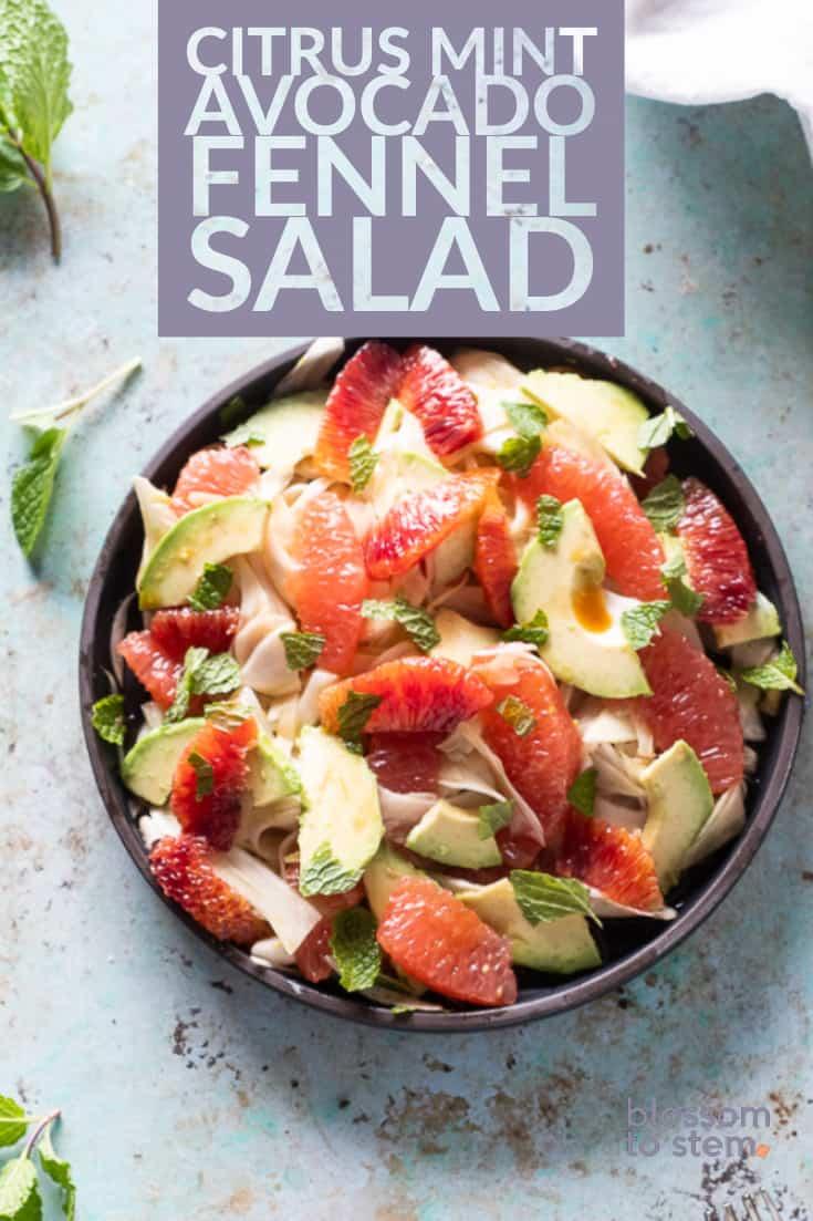 Citrus Mint Avocado Fennel Salad