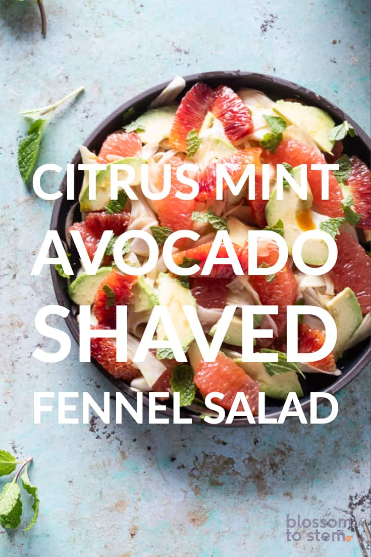 Citrus Mint Avocado Shaved Fennel Salad