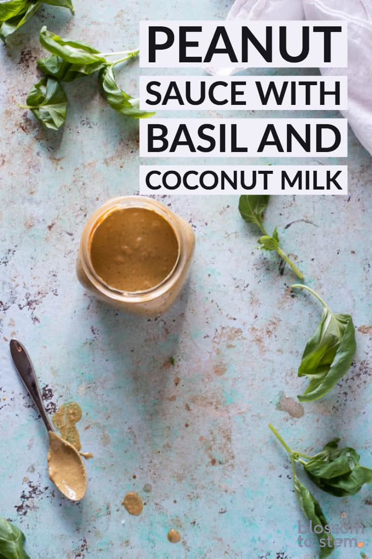 Peanut Sauce with Basil and Coconut Milk