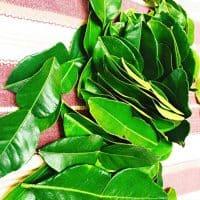 Fresh Lime Leaves (Thai Lime Leaves) 2 Oz.