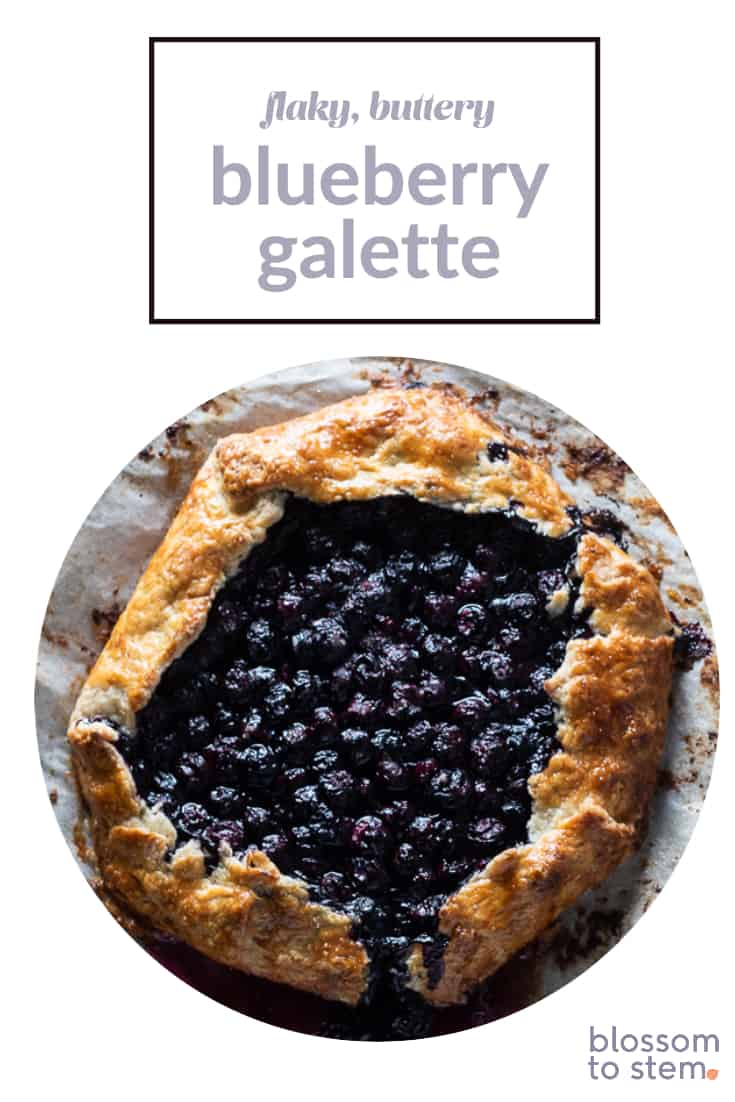 Flaky, Buttery Blueberry Galette