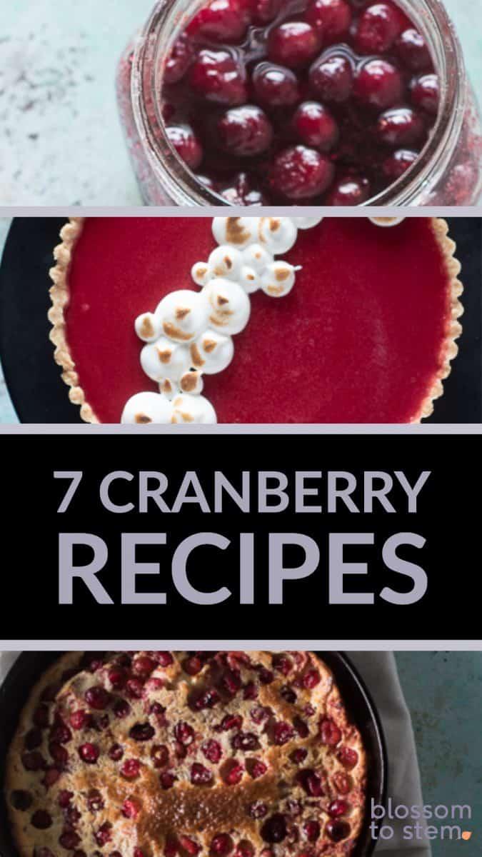 7 Cranberry Recipes