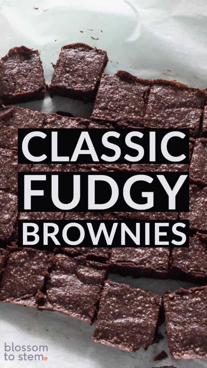 Classic Fudgy Beownies