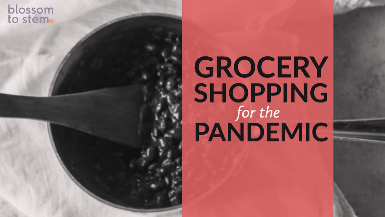 Grocery Shopping for the Pandemic