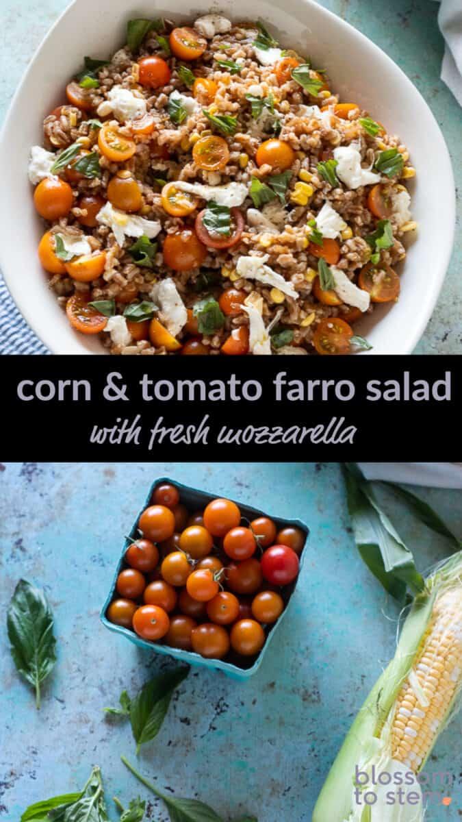 Corn & Tomato Farro Salad with Fresh Mozzarella