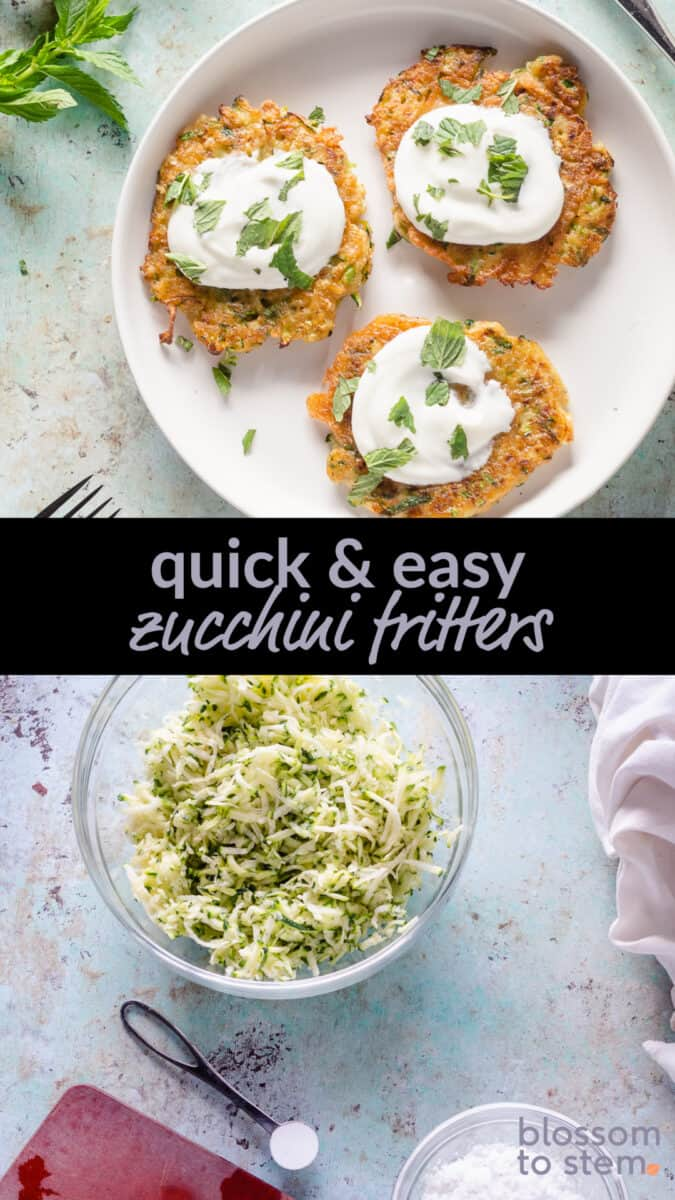 Quick & Easy Zucchini Fritters