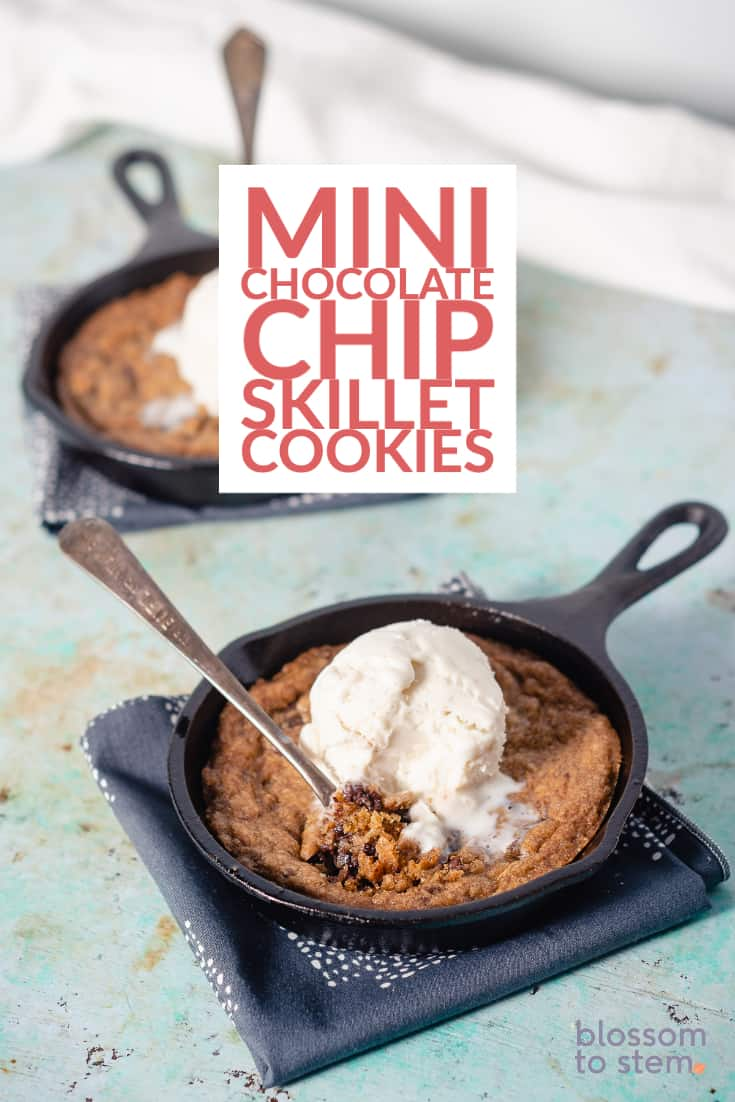 Mini Chocolate Chip Skillet Cookies