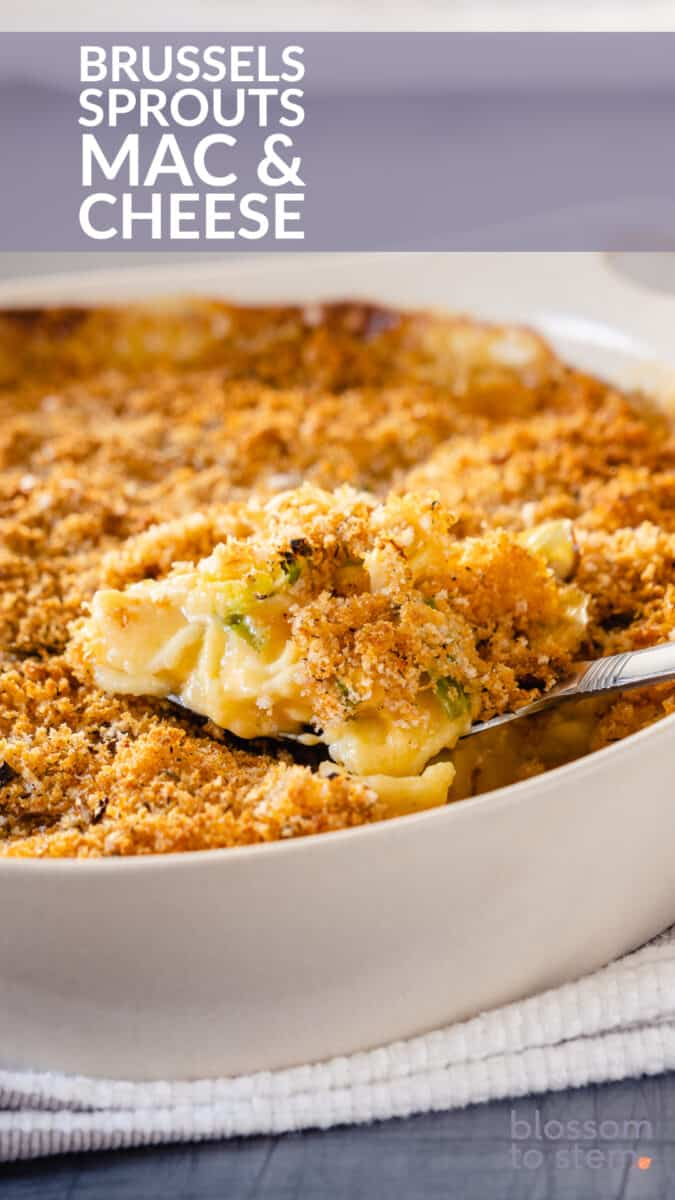 Brussels Sprouts Mac & Cheese